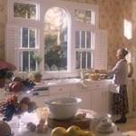 Atlanta Kitchen Windows