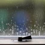 Atlanta Window Condensation